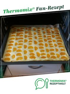 Quarkblechkuchen mit Mandarinen von V.v.D.. Ein Thermomix ® Rezept aus der Kategorie Backen süß auf www.rezeptwelt.de, der Thermomix ® Community.