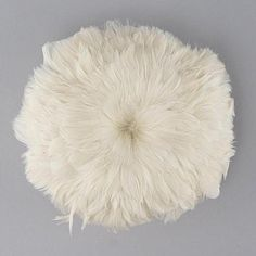 """Ivory Goose Coquille Feather  Product SKU: GCWS4_5YD Size: 4-5"""" x 1 yard (strung) Shop Feathers: www.featherplace.com"""