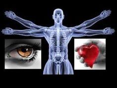 100 curiosidades sobre el ser humano, cosas que no sabías del cuerpo hum...