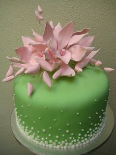 pink and green | par Artisan Cakes by e.t.