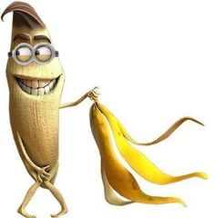 Naturally, after consuming a banana,you would throw away the peels.Banana peels however have equal uses the the fruit itself.