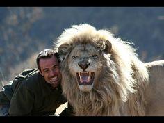 The LION WHISPERER Kevin Richardson Living with the LIONS Full Length Documentary - YouTube