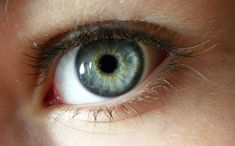 Top 9 superfoods to improve eyesight and vision naturally Pretty Eyes, Beautiful Eyes, Iris Eye, Realistic Eye Drawing, Blue Green Eyes, Eye Sight Improvement, Vision Eye, Dark Circles Under Eyes, Aesthetic Eyes