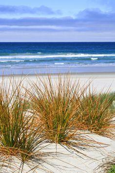 h4ilstorm: Victory Beach, Otago Peninsula, New Zealand, 2010 (by Célia Mendes Photography)