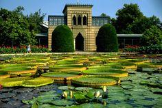 Wilhelma zoo, Stuttgart, Germany.