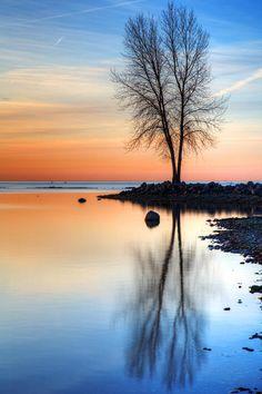 ✮ Lake Erie Metro Park - Michigan