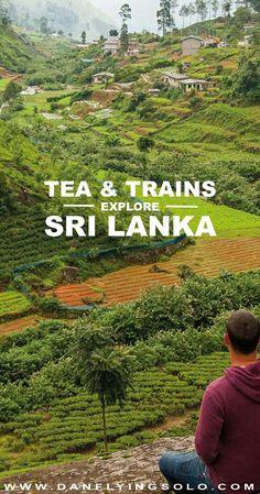#SriLanka 's #HillCountry and #tea with breathtaking #photography Daniel James