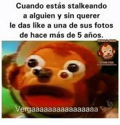 Memes de Pedro el mono. - #18.
