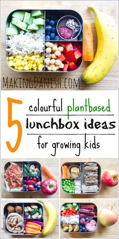 you need inspiration for easy to make vegan lunches for your kids, then these 5 vibrant plantbased lunchbox ideas are perfect for you. You don't need to be vegan to want to squeeze in a litte extra veggies and a little less meat into your kids lunches. Easy Vegan Lunch, Vegan Lunches, Lunch Snacks, Lunch Recipes, Baby Food Recipes, Whole Food Recipes, Kid Lunches, Easy Kids Lunches, Lunch Meals