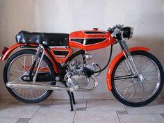 Flandria Mistral, Flandria-cyclos sport, monocylindre deux temps, refroidissement par air, graissage par mélange, freins à tambour- guidon bracelet, graissage par mélange, moteur 49 cm3-selle-biplace, 4-vitesses-au-pied-guidons bracelets, fourche télescopique, amortisseurs arriere, Flandria-cyclomoteur-Bruges-Belgique-Europe-Flandria Vintage Moped, Vintage Motorcycles, Cars And Motorcycles, 250cc Motorcycle, 50cc Moped, Scooter 50cc, Yamaha 1000, Auto Retro, Classic Bikes