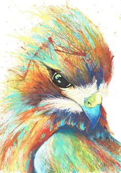 Colourful Hawk Black Canvas Paintings, Colorful Paintings, Hawk Bird, Birds Of Prey, Paint Pens, Bird Art, Impressionism, Color Pop, Art Projects