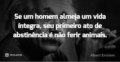 Se um homem almeja um vida íntegra, seu primeiro ato de abstinência é não ferir animais.... Frase de Albert Einstein.