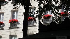 Paris Faye 2 030