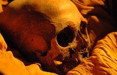 The Royal Mummies and portraits Akhenaton, Egypt Mummy, Ancient Egypt History, Egyptian Mummies, Egyptian Mythology, African American History, Knowledge, Portraits, Pictures