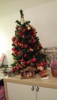 Gezellig de mini kerstboom