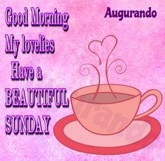 Best Good Morning Sunday Images! Always Updated Images! Have A Beautiful Sunday, Good Morning Beautiful Flowers, Happy Sunday Quotes, Happy Day, Good Morning Sunday Images, Beautiful Images, Best Quotes, Fun, Motivation