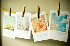 Spring .Flowers and Sky  garden note cards. Pretty by joystclaire, $12.00
