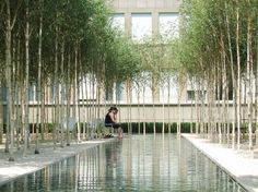 PWP Landscape Architecture : Novartis Headquarters, Forum 1 Courtyard