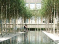 PWP Landscape Architecture : Novartis Headquarters, Forum 1 Courtyard