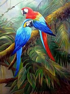 Pin by Afsaneh Rokni on Birds painting in 2019 Tropical Art, Tropical Birds, Exotic Birds, Colorful Birds, Watercolor Bird, Watercolor Paintings, Oil Paintings, Painting Art, Parrot Painting