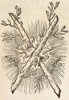 French Emblems: Pictura of Paradin, Claude: Devises heroïques Flammescit uterque. Medieval Drawings, Medieval Art, Medieval Tattoo, Illustrations, Illustration Art, Woodcut Tattoo, Maleficarum, Esoteric Art, Occult Art