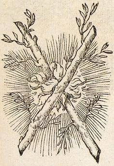 Pictura of Paradin, Claude: Devises heroïques (1551): FLAMMESCIT UTERQUE.