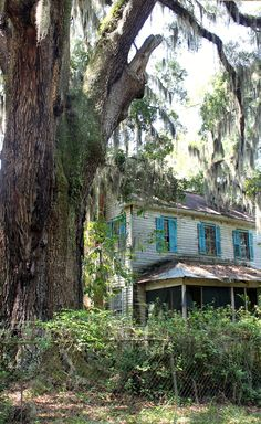 Glen Echo Plantation, Ellabell, GA