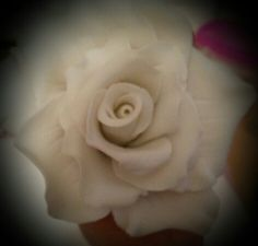 My sugar Rose by Shirlie W