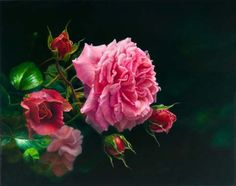 """http://www.susanart.com/blog/wp-content/gallery/floral-artwork/a-cote-de-la-fontaine.jpg """"A Cote de la Fontaine"""". Oil on Belgian linen. Painting by Susan Harrison-Tustain.This rose was nurtured by an ancient fountain in a little village courtyard in France. Of the fountain the rose said: He gave me strength, He gave me support, He nurtured. I flourish thought his generosity, And now I reward him with my beauty."""