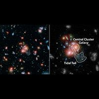 NASA Telescopes Find Galaxy Cluster with Vibrant Heart