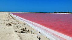 Las coloradas ubicada en el municipio de Rio Lagartos Estado de Yucatan Mexico.  dedicados a la pesca y la Industria Salinera.