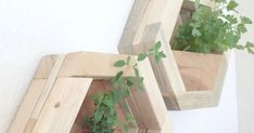 How to make DIY Hexagon Planters, free plans and picture tutorial. Diy Wood Planters, Hanging Planters, Hexagon Shelves, Savvy Southern Style, Scrap Wood Projects, Wood Worker, Plant Stands, Door Wall, How To Make Diy
