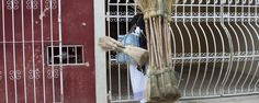 My favorite kind of brooms in Yucatan. I always buy some when I see them sold... they work great!
