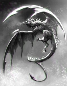 In Flight; Dragon