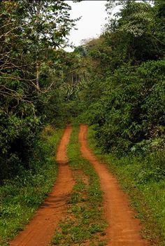 caminos misioneros..