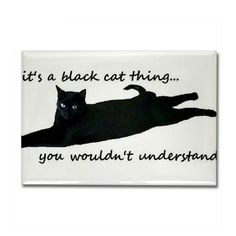 Siamese Cats Sealpoint Black cat rectangle magnet from Cafe Press - Shop black cat thing Rectangle Magnet designed by Bombay Kitty. Lots of different size and color combinations to choose from. Pretty Cats, Beautiful Cats, Crazy Cat Lady, Crazy Cats, I Love Cats, Cool Cats, Black Cat Quotes, Black Cat Art, Black Cats