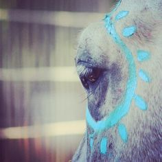 Painted sun horse