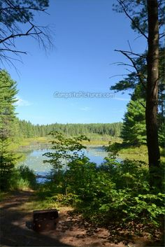 53 best algonquin park kearney lake images algonquin park canada rh pinterest com