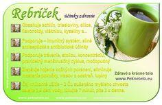 Dieta Detox, Wellness, Organic Beauty, Art Pictures, Natural Health, Planer, Life Is Good, Health Fitness, Herbs