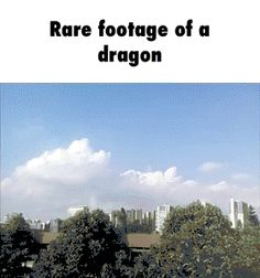 Rare footage of a dragon http://ift.tt/2jXdc6Y