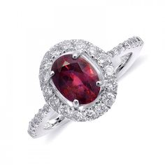 A rich, purple-red natural, unheated ruby glows within a floating halo of sparkling diamonds in a 14 karat white gold ring. This carats, GIA Report, oval ruby is surrounded by carats of pave diamonds forming the halo and set into the sides Red Jewelry, Jewellery, Ruby Diamond Rings, Halo Setting, Natural Ruby, White Gold Rings, Statement Rings, Heart Ring, Diamonds