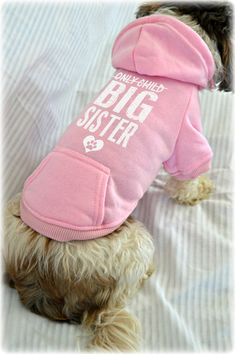 Custom Dog Sweatshirts. Only Child Big Sister. New Baby Reveal Idea. Small Pet Clothes. Pregnancy Announcement Idea. Pregnancy Reveal Idea