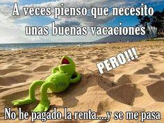 La rana Rene - Vacaciones