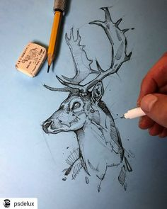 Psdelux is a pencil sketch artist based in Tatabánya, Hungary. He usually draws animal sketches. Psdelux also makes digital drawings. Art And Illustration, Art Illustrations, Deer Drawing, Drawing Artist, Painting & Drawing, Pencil Art Drawings, Art Drawings Sketches, Cool Drawings, Sketch Drawing