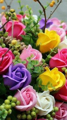 New Wall Paper Flores Rosas Colour 19 Ideas Beautiful Flowers Wallpapers, Beautiful Rose Flowers, Exotic Flowers, Amazing Flowers, Pretty Flowers, Colorful Flowers, Beautiful Beautiful, Beautiful Morning, Love Rose Flower