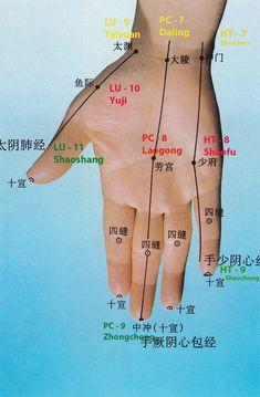 Shu antichi della mano e polso Meridian Acupuncture, Acupuncture Points, Acupressure Points, Qigong, Hand Reflexology, Acupressure Treatment, Massage Techniques, Traditional Chinese Medicine, Keep Fit
