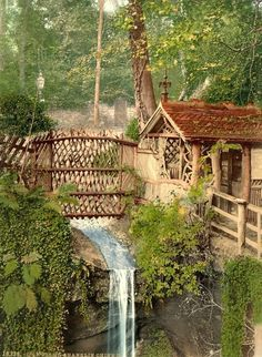 Amazing Snaps: Shanklin Chine, The waterfall on the Isle of Wright