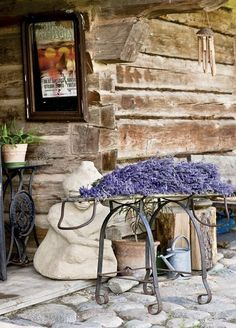 Love the wrought iron legs of the table which is laden with lovely lavender, also love the timber. Lavender Cottage, Provence Lavender, Lavender Garden, French Lavender, Lavender Fields, Lavender Color, Lavender Flowers, Lavender Plants, Lavender Sachets