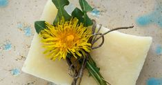 This sunny palm-free soap recipe is infused with dandelion flowers and scented with a cheerful blend of citrus essential oils. Directions are given for both hot process and cold process methods.