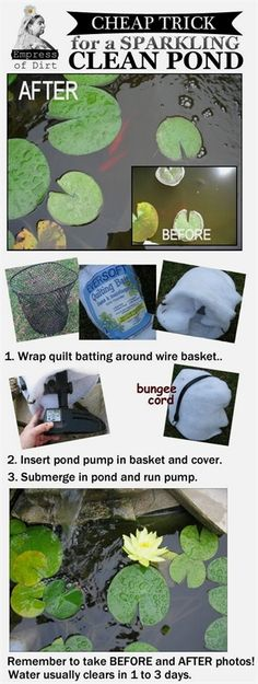 Can't see your pond fish because the water looks like pea soup? Try this Empress of Dirt clean water trick. Many pond owners say it clears their water in hours, even after years of struggle. #WaterGarden